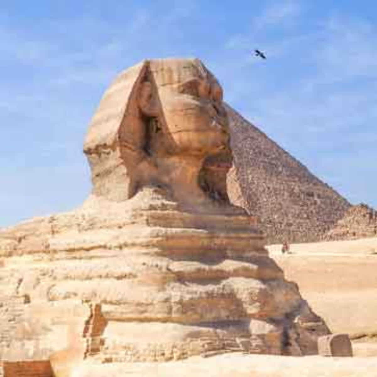 Cairo Tour Package From Dubai Egypt Tour Package From Dubai